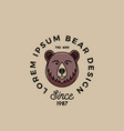 line style bear face with retro typography vector image