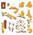Set of squirrels cartoon Squirrels vector image