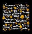 Hello summer calligraphy design vector image