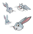 bunny heads vector image