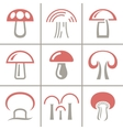 nineteen mushrooms collection isolated on white vector image