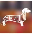 Creative dog silhouette vector image