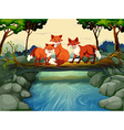 Three foxes on the log over the river vector image vector image