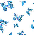 flying blue butterflies on a white background vector image