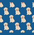 labrador golden retriever dog seamless on indigo vector image