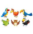 Six flying birds vector image