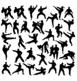 Martial Art Sport Activity Silhouettes vector image