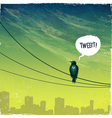 Bird on wire vector image