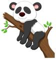 Sleeping panda cartoon vector image