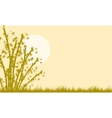 Silhouette of bamboo at the morning vector image