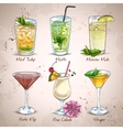 New Era Drinks Coctail Set vector image