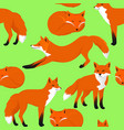 fox cartoon seamless pattern vector image