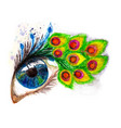 peacock feather eyelashes vector image
