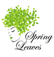 Mother nature with spring leaves as hair vector image