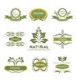 Organic elements labels logo vector image