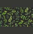 seamless pattern of eucalyptus palm fern vector image