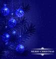 fir branch blue back vector image vector image
