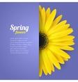 Spring flower in paper pocket vector image