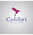 Colibri text background vector image