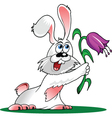 Cartoon Bunny vector image