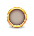 metal gold button vector image