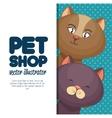 pet shop character cat banner vector image