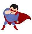 Super Hero Fighting vector image