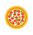 vegetarian pizza with slices of tomatoes vector image