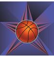 Basketball Ball on Rays Background5 vector image vector image