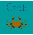 flat on background animal crab vector image
