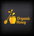 Organic honey vector image vector image