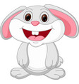 cute rabbit cartoon vector image