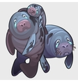 Family of naval seal mom dad and baby crying vector image