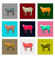 set of in flat style sheep vector image