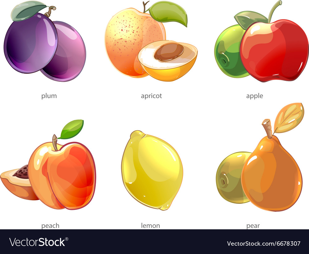 Cartoon fruits icons set vector