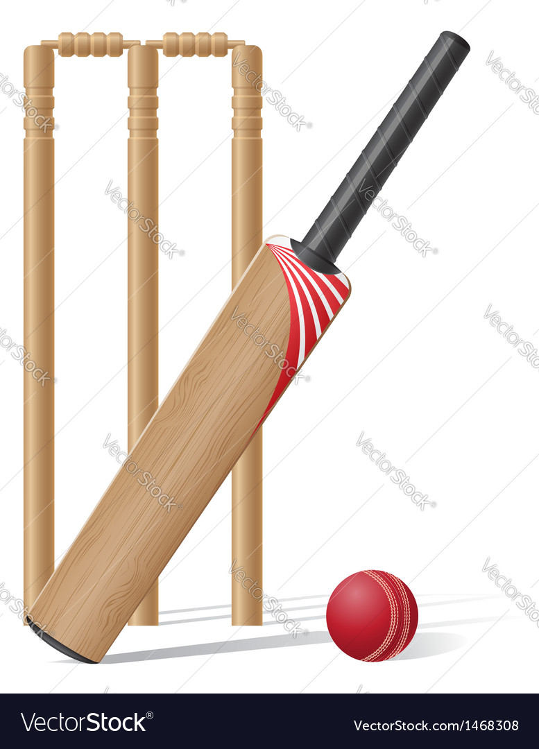 Cricket 02 vector
