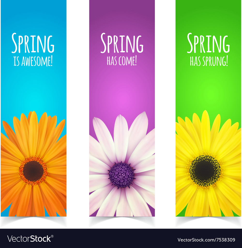 Spring flowers composition vector