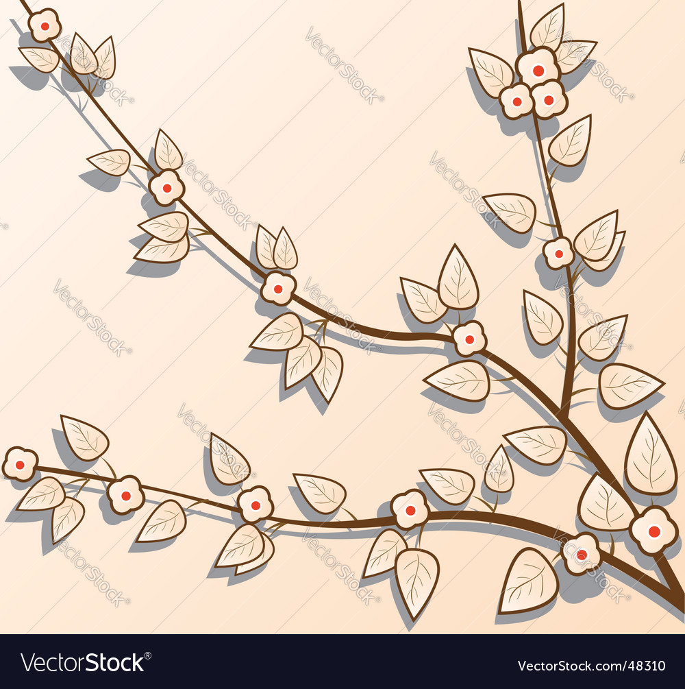 Sacra branch vector