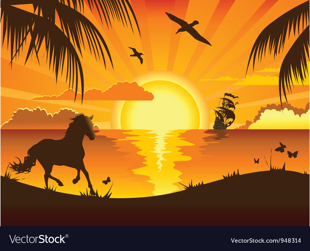 Beachside sunset vector