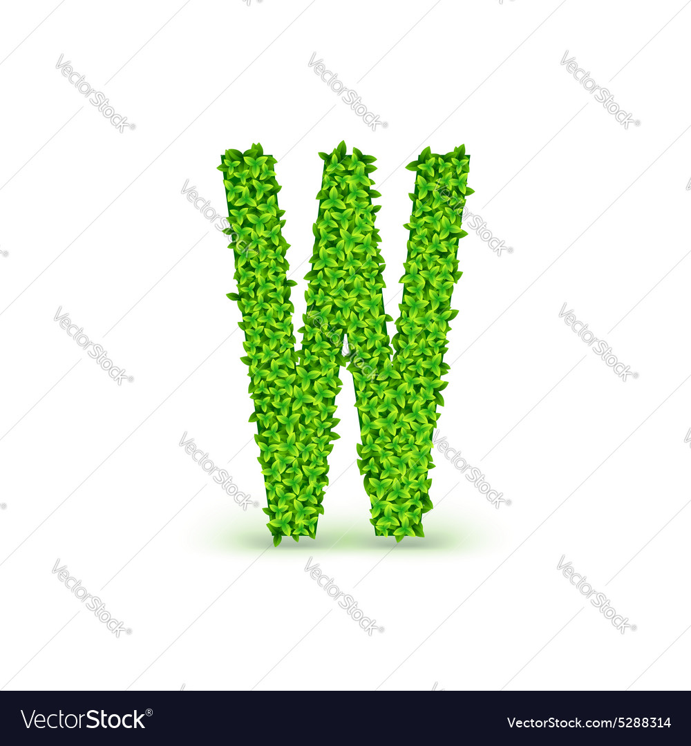Green leaves font w vector