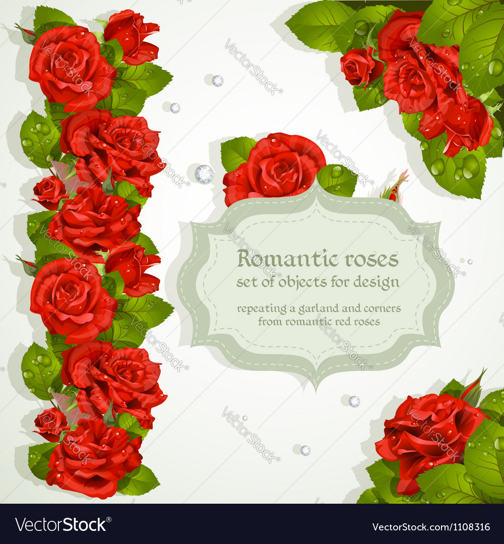 Red roses bouquet background vector