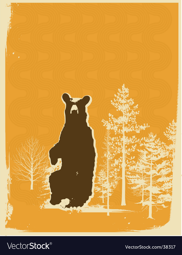 Bear screen print style vector