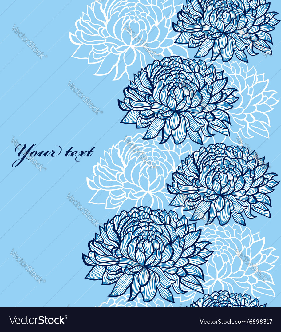 Chrysanthemums vector