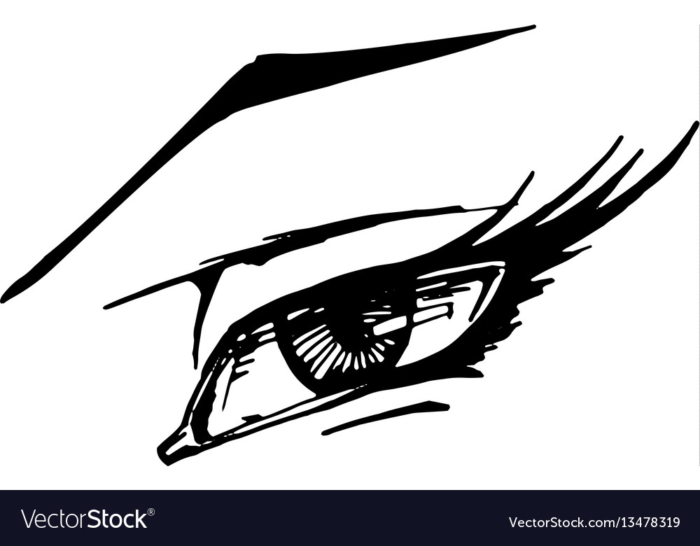 Woman eye on white background vector