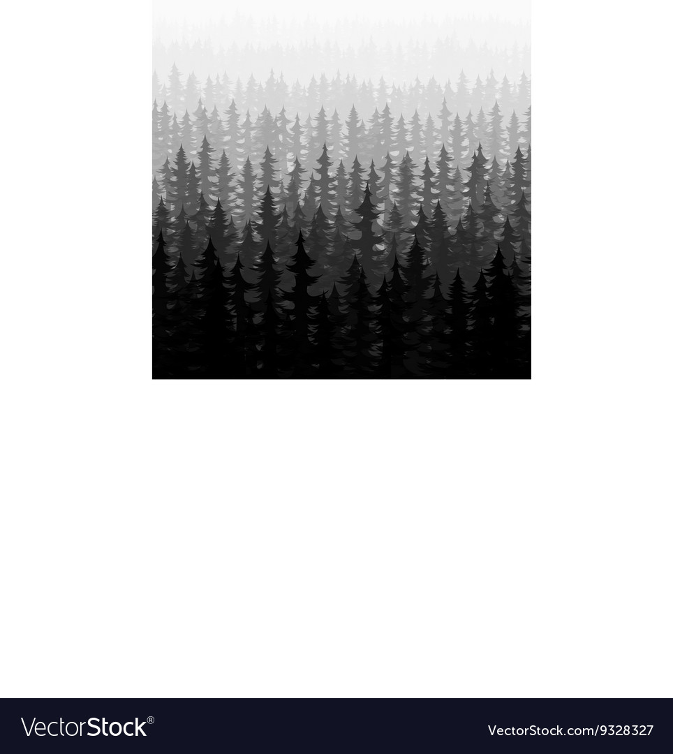 Nature forest landscape pine fir vector