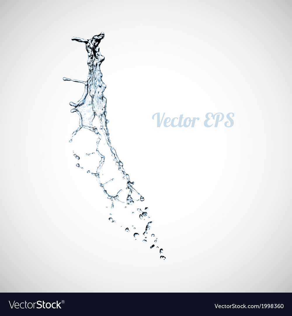 Blue water splash isolated on white background vector