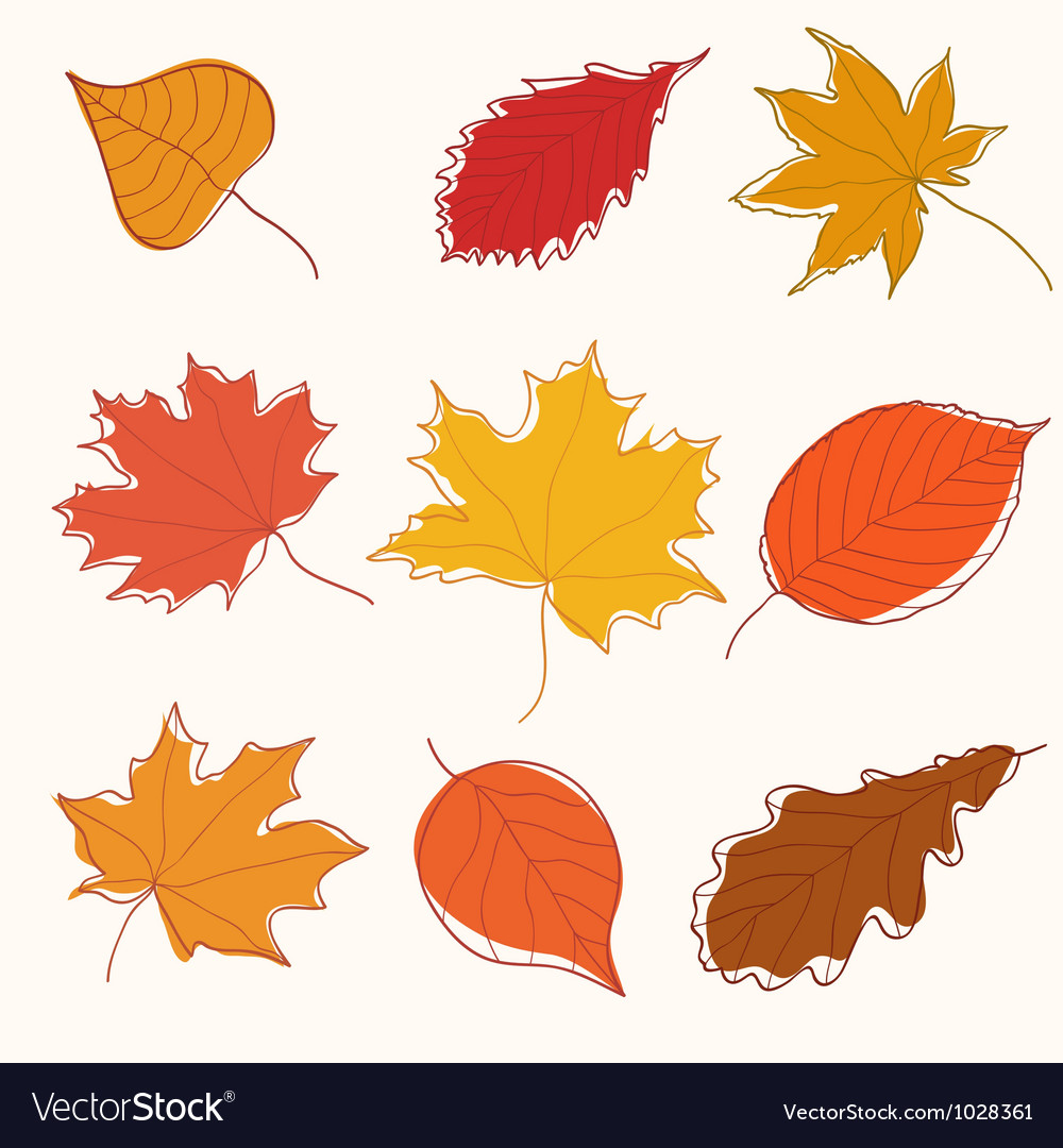 Set of autumn doodle leaves vector