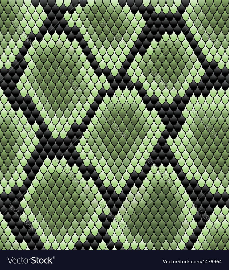 Green seamless snake skin pattern vector