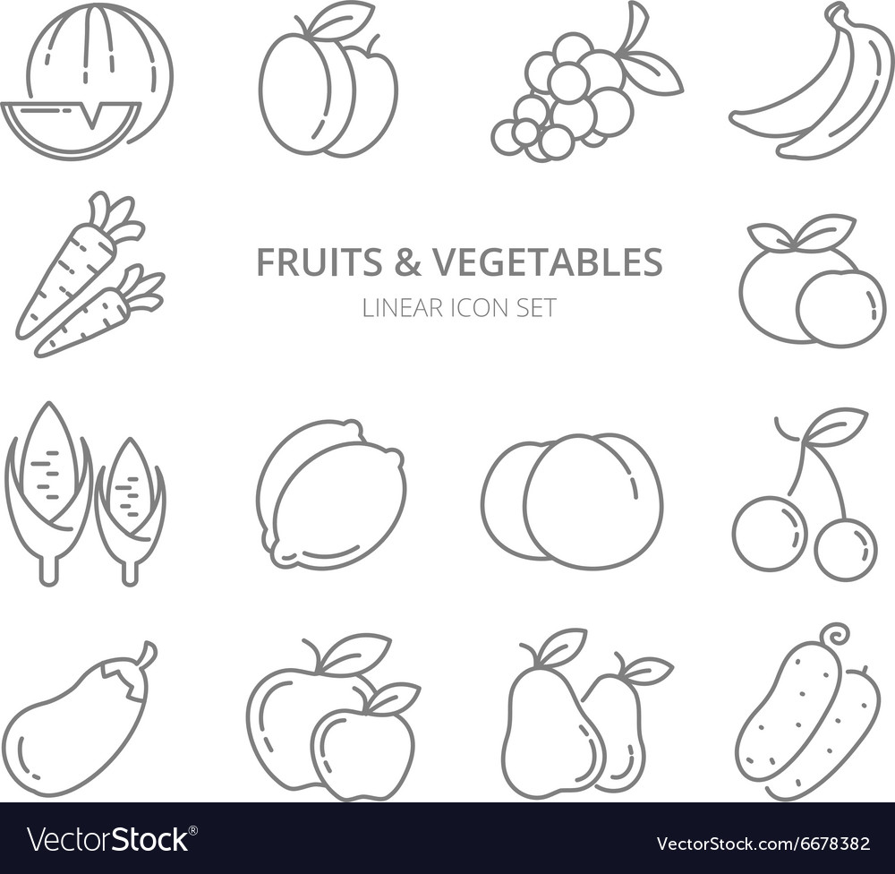 Fruits and vegetables linear icons set vector
