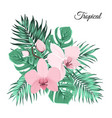 pink orchid bouquet with green tropical leaves vector image